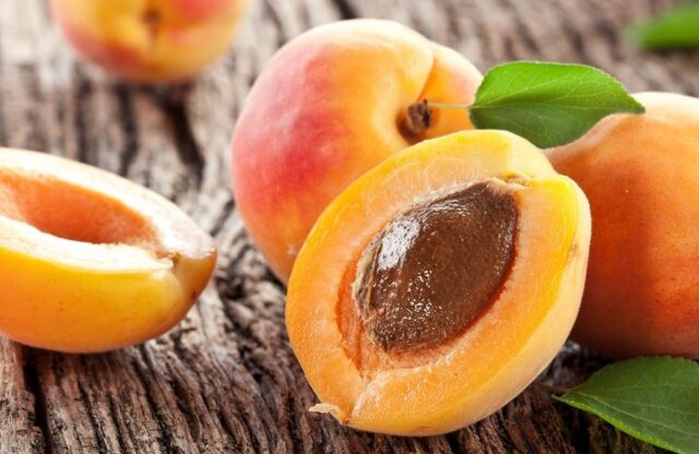 Fun-Facts-of-Apricots-2